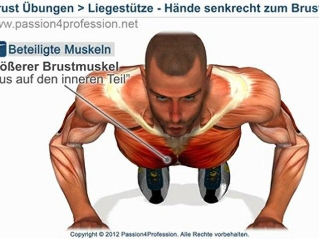 Liegestütze RICHTIG - Training liegestütze - Brustmuskeln trainieren