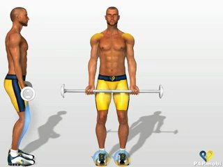 Standing Barbell Curl - Killer Home Arm Workout