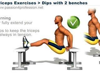 Triceps Exercises   dips 2 benches