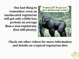 Why a Vegetarian Diet? Protein Source and Why a Vegetarian Doesn't Worry About Protein