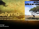 African Tribal Orchestra - Native energy - Melynga
