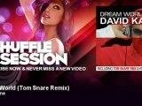 David Kane - Dream World - Tom Snare Remix - ShuffleSession