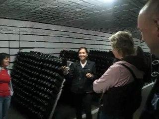 Экскурсия в криковские винные погреба