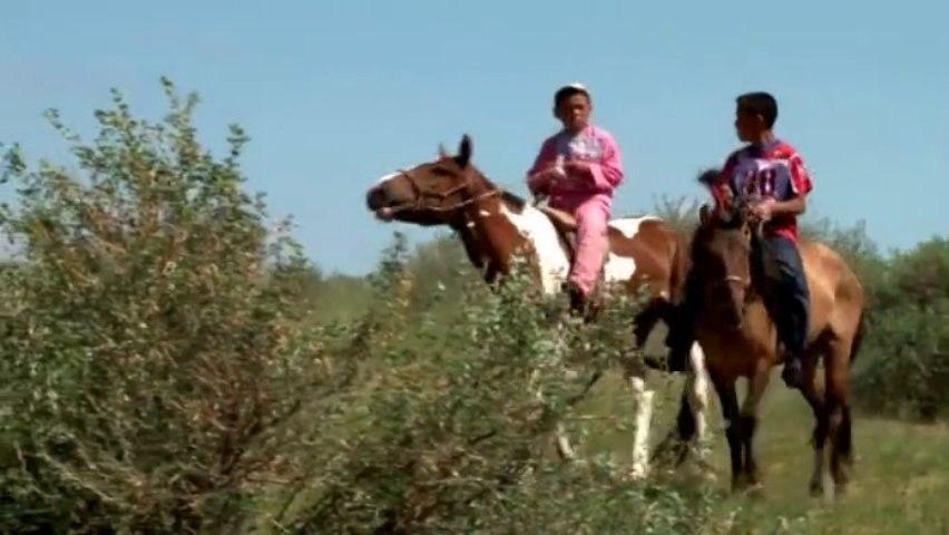 La route de la soie - La Mongolie Fête du Naadam - Courses de chevaux - Gilles Cousin