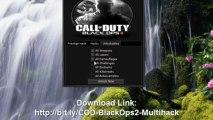 Call of Duty 4 - Aimbot, Wallhack, Multihack new - video
