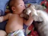 Un joli mement de tendresse entre un bébé et un chat