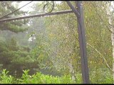 La toile d'araignée du jardin et le poème de Victor Hugo J'aime l'araigné et l'ortie