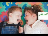 Les Hépatites-L'Hépatite B et la Grossesse-Version en arabe-Dr AMINE Abdelkader-Casablanca.-Morocco