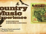 The Ugly Dog Skiffle Combo - Duellin' Banjos - Instrumental - Country Music Experience