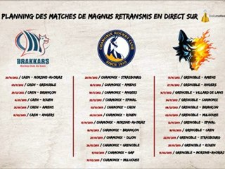 Planning des matches de Ligue Magnus retransmis en direct
