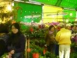 Vers le marché aux fleurs