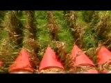 (VÍDEO) Dossier con Walter Martínez 11.10.2012