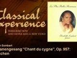 """Franz Schubert, Franz Liszt : Schwanengesang """"Chant du cygne"""", Op. 957: Ständchen"""