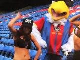 El espectacular baile de las animadoras del Crystal Palace