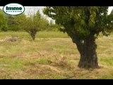 Achat Vente Terrain  Cruas  7350 - 641 m2