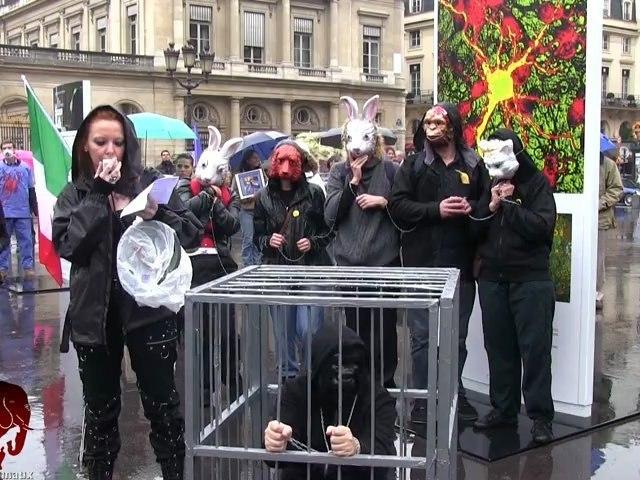 Rassemblement anti vivisection (20.10.2012)