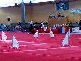Taiga, emma, agility, ch. jeunes conducteurs 2012, jumping