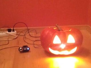 OVERSIMPLE : Halloween détecteur de mouvement