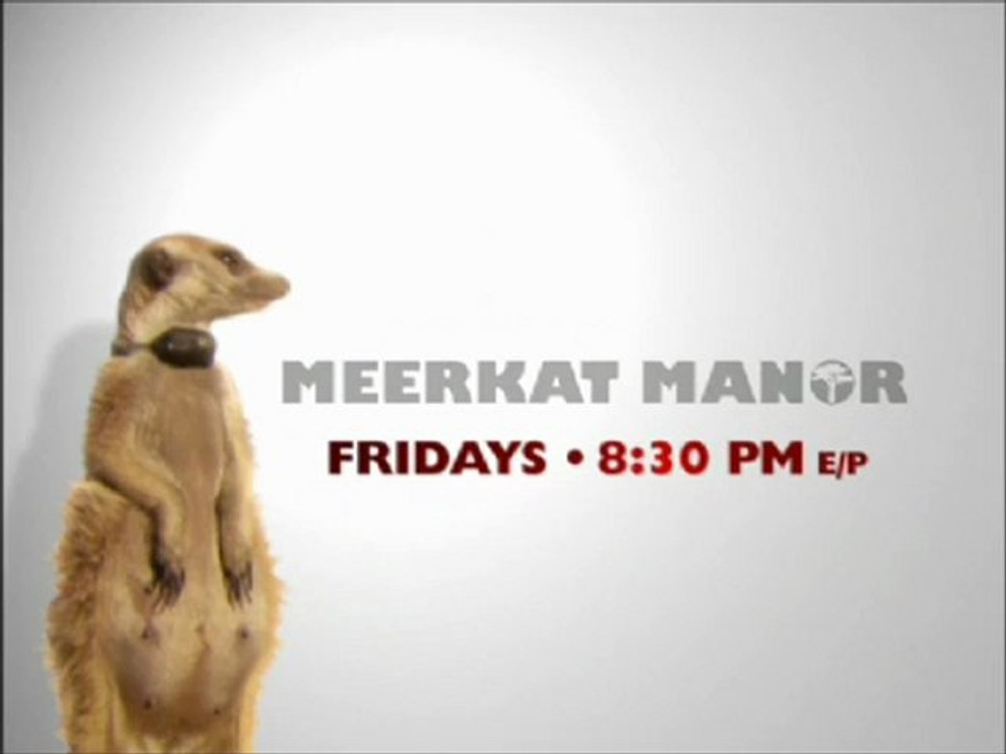 Animal Planet - Meerkat Manor Promos (2006)
