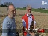 Les crop circles sont-ils des signes extra-terrestres ? (FR) 2/2