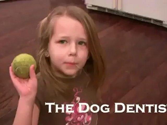 Arracher une dent de lait avec un chien