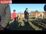 Bovins viande : Patrick Bénézit (FNB) parle de prix aux Aveyronnais