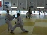 Jujitsu Rollin Philippe