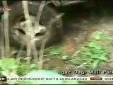 Zor Yollar 16.Bölüm SARAYCIK YAYLASI ILGAZ www.turkcebelgeselizle.com