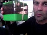 Alessandro Di Benedetto (Team Plastique) plante des salades