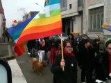 Marche des fiertés improvisée à La Roche-sur-Yon, en marge du rassemblement pour l'égalité des droits - 17 novembre 2012