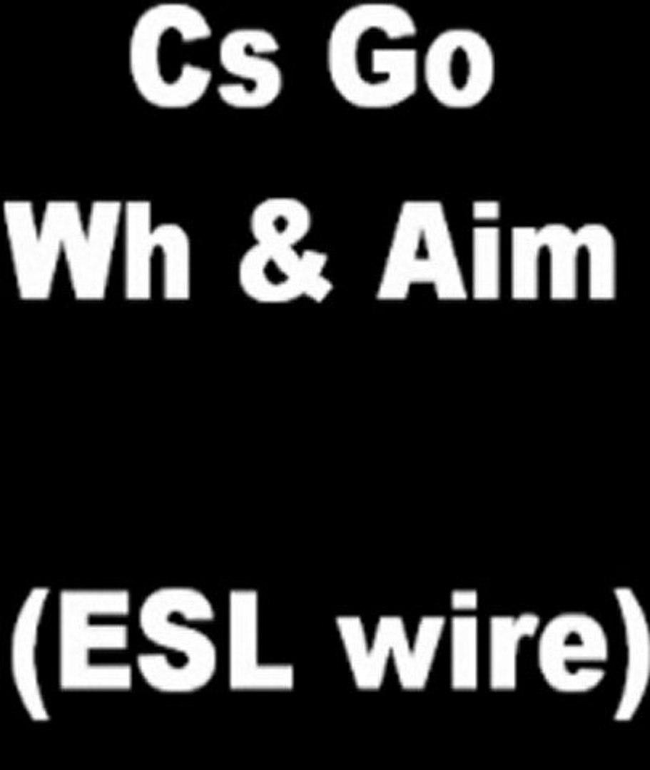 Counter Strike:Global Offensive MultiHack (aimbot, crosshair, wallhack) ESL wire.