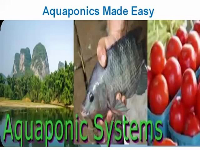 Aquaponics Made Easy – If You Get This Guide – Check This Video Now! – YouTube
