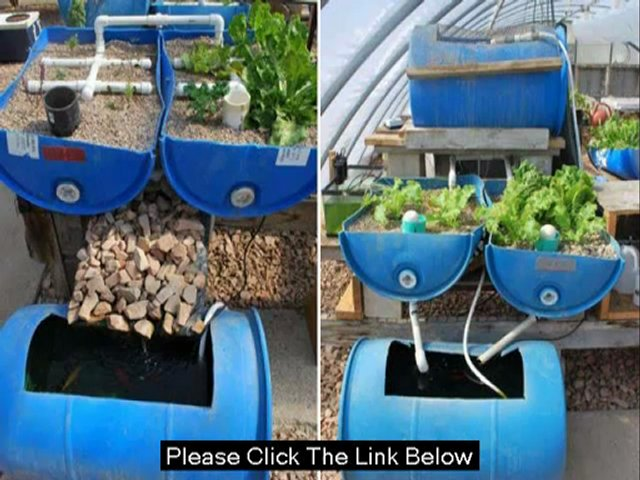 DIY Aquaponic Guide – Learn How To Start Aquaponic Easily – YouTube