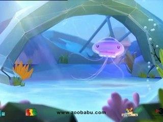 Zoobabu - Jelly fish