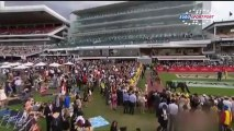 Horse Racing Time: Melbourne