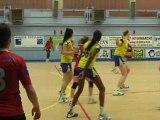 Canal32 - Le Mag Sports - Handball Sainte Maure Troyes (12/11/12)