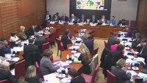 Intervention en commission des Affaires Culturelles et de l'Education sur la rémunération pour copie privée 21_11_2012