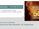 Camille Saint-Saëns : The Carnival of the Animals: VII. Aquarium