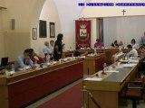 Consiglio comunale 10 settembre 2012 Cirsu replica Arboretti