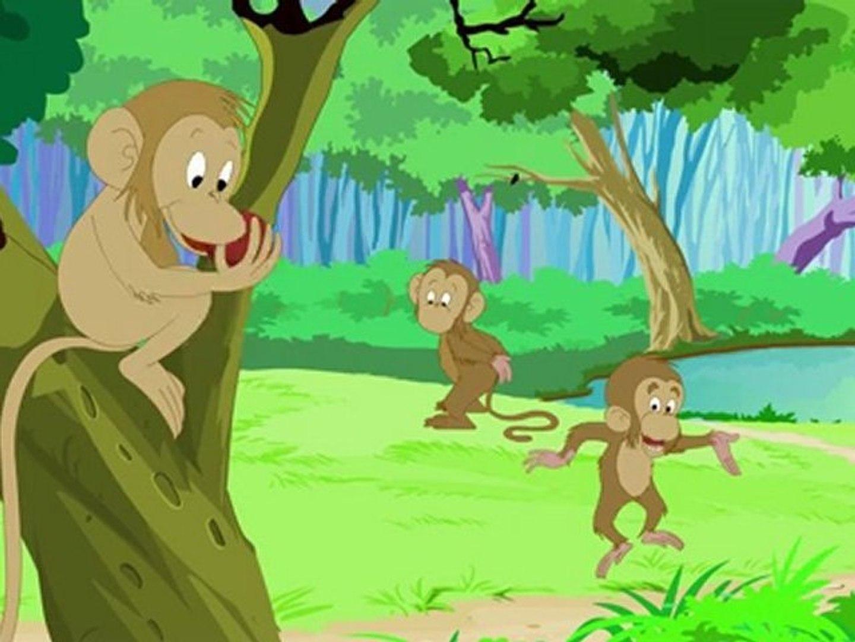 Animal Facts - Monkey