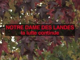 Notre Dame des Landes: la lutte continue