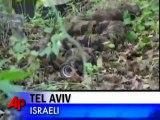 Israël : Le Serpent Robot de l'armée militaire