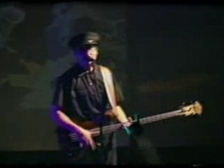 Primus - too many puppies (live)