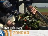 Uit Het Nieuws over treinongeluk Winsum [promo] - RTV Noord