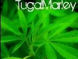 Tugalmarley - Fume Fume et Fume