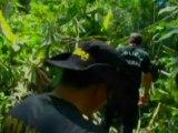 Seita cristã na Amazônia é suspeita de envolvimento com tráfico de drogas