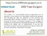 1000 Trees Gurgaon Sec- 105 Gurgaon
