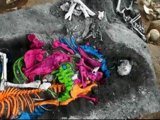 Evreux des pratiques funéraires inconnues en Gaule romaine