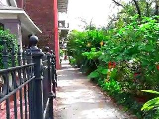 Postales de New Orleans
