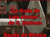 CONCIERTO: La Boda de Luis Alonso